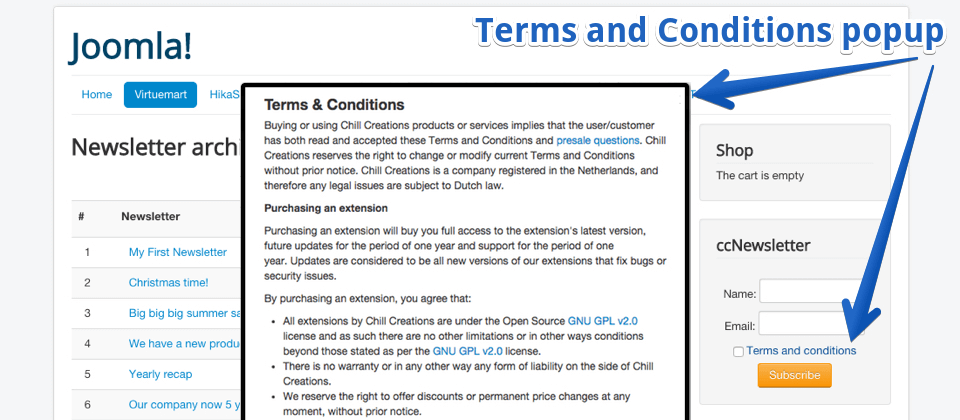 Newsletter subscription with Terms and Conditions